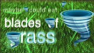 maybe i could eat and dine in a tornado (featuring bill wurtz and blades of grass)