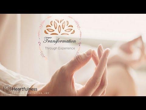 Transformation Through Experience
