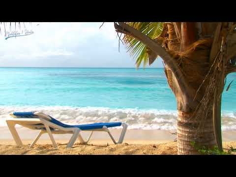 Relaxing Music for Stress & Anxiety Relief, Positive Music for Med…