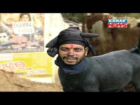 Loka Nakali Katha Asali: Biography Of A Goat