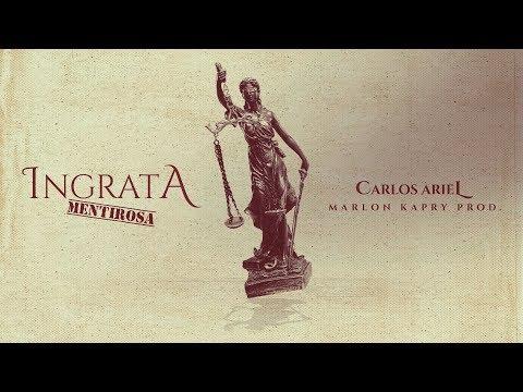 Ingrata Mentirosa - Carlos Ariel | Lyric Oficial