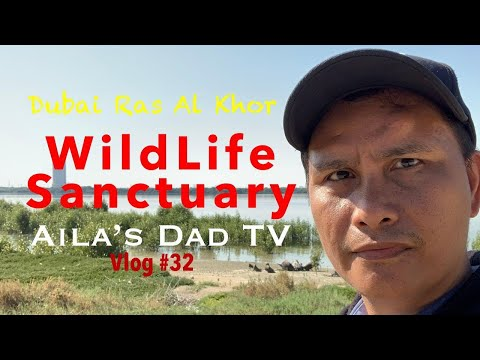 WildLife Sanctuary Dubai Ras Al Khor  | | OFW LIFE in UAE | Aila's Dad TV