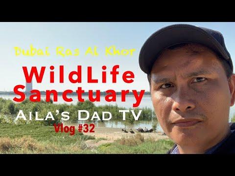 WildLife Sanctuary Dubai Ras Al Khor  | | OFW LIFE in UAE | Aila's Dad TV
