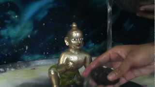gauriya math faridabad  krishna abhishek 2012