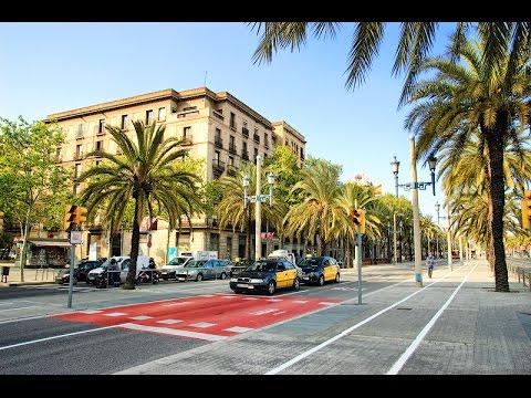 Day of the city of Santa Maria da Feira