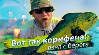 ВОТ ЭТО КОРИФЕНА Морская рыбалка с берега Сёрфтроллинг 2019 08