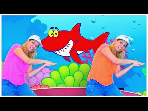 Baby Shark KLS Official Video