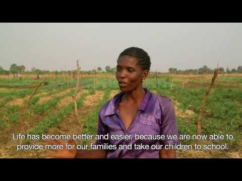 Africa Irrigation Project (Zambia)--Long Version