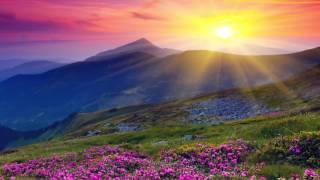 A ti Jehova - Aida de Marino