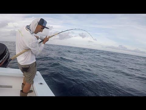 Fishing for $5 Bills? (Commercial Kingfish Fishing)
