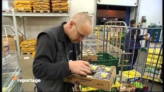 Früchte der Nacht Geschichten vom Berliner Grossmarkt Doku über Berliner Grossmarkt in HD Teil 1