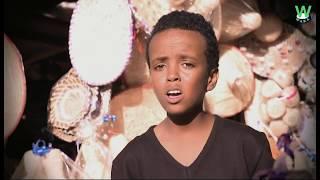 WAKAtv - Siem Siyum - Adey | ኣደይ ብድም. ሴም ስዩም - New Eritrean Music 2019