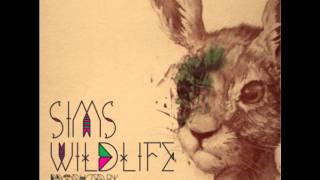 Play Wild Life