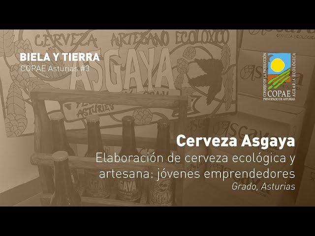 Elaboración de cerveza ecológica y artesana: jóvenes emprendedores