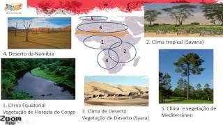 9º Ano | Geografia | África - Vegetação
