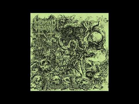 Morbid Messiah - Dungeon of Vermin