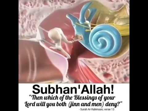 Listen surah-e-Rehman ( Qari Abdul Basit Voice )