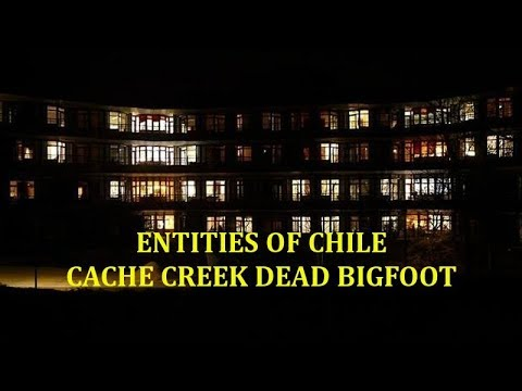 Entities of Chile | Cache Creek Dead Bigfoot