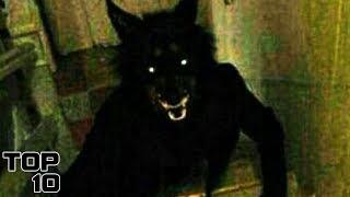 top-10-scary-creatures-seen-in-basements