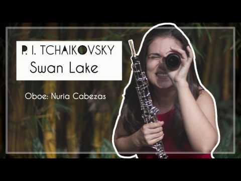 P. I. TCHAIKOVSKY: SWAN THEME. Oboe solo
