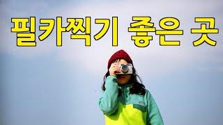 ( Eng/JPN)필름카메라 들고 출사 하기 좋은 서울명소 film camera seoul (film photography /Seoul/커플/이화동/고양이)생활모험가부부