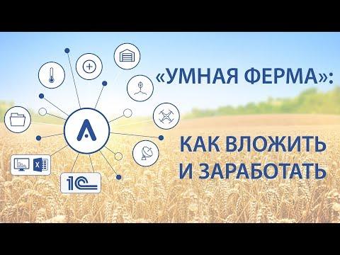 видео-4