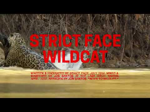 Strict Face - Wildcat (Official Audio)