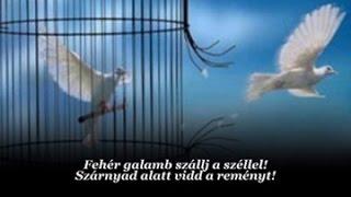 Scorpions : White Dove / Fehér galamb (magyar felirattal)