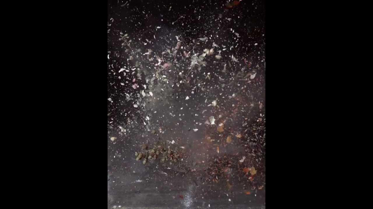 Ori Gersht's Big Bang