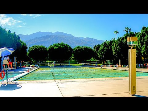Swimming Laps At The Palm Springs Swim Center
