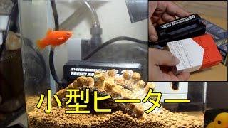 小型ヒーター 紹介と設置 プラティ水槽と金魚鉢の報告も thumbnail
