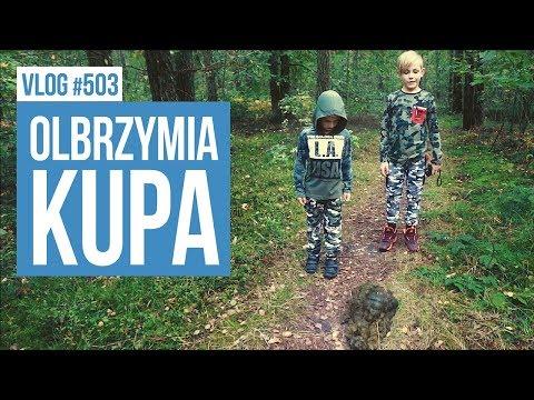 Olbrzymia kupa / VLOG #503