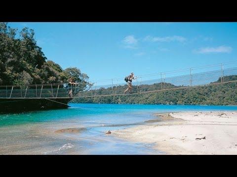 Rakiura Track Stewart Island - New Zealand Great Walks Track - New Zealand's Information Network