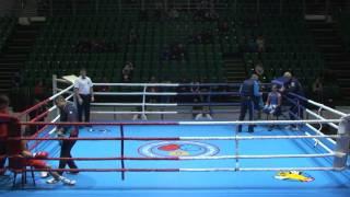 Чемпионат России по боксу 2015