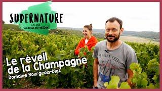 Supernature Ep.2 - Le Réveil de la Champagne