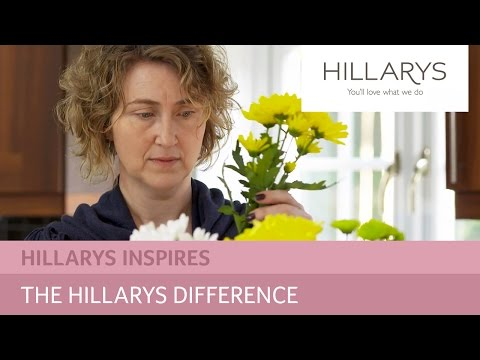 The Hillarys difference - all about our service