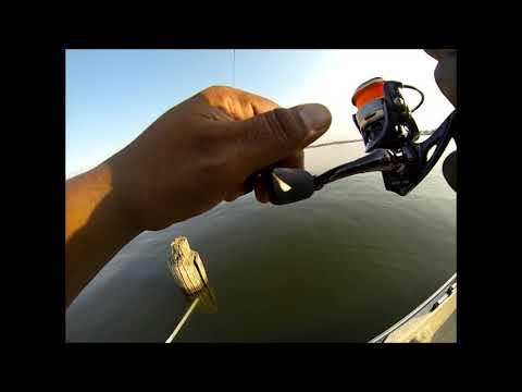 Pro Anglers Vs.ACC Crappie Stix Vs. H2O Xpress