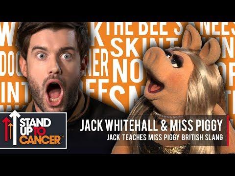 Jack teaches Miss Piggy British Slang!  Jack Whitehall & Miss Piggy
