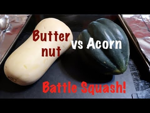 Battle Squash! Butternut vs Acorn (vegan!)