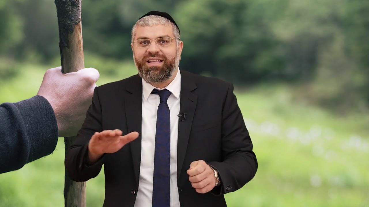 הרב מיכאל כהן   מקל הליכה עם צלב