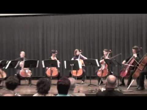David Popper (arr. V. Despalj): Polonaise de Concert, Op. 14 (cello ensemble)