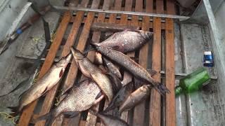 Охота и рыбалка осень 2016 (поездка в лес)