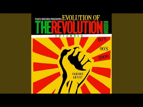 Tad's Record presents Evolution of The Revolution Riddim Extended (80's, 90's, 2000's)