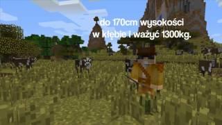 Minecraft: Film dokumentalny o krowach