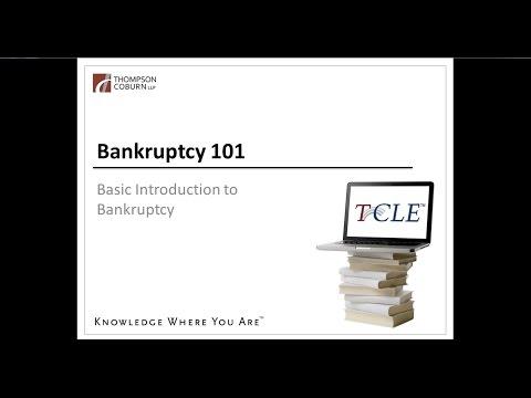 Bankruptcy 101: Bankruptcy Basics