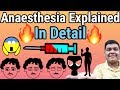 Anaesthesia explained   How it works?