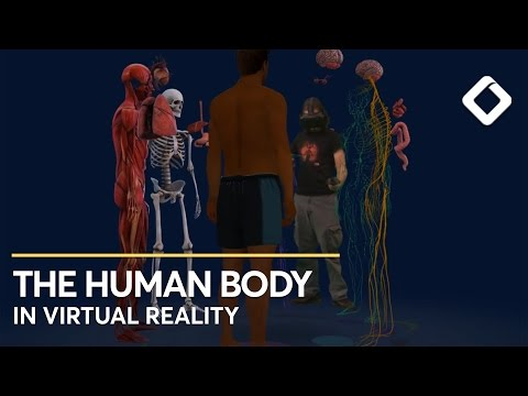 This is Real - YOU VR