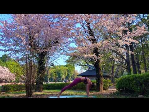 Sakura Intermediate Vinyasa Flow with Hana Lukac