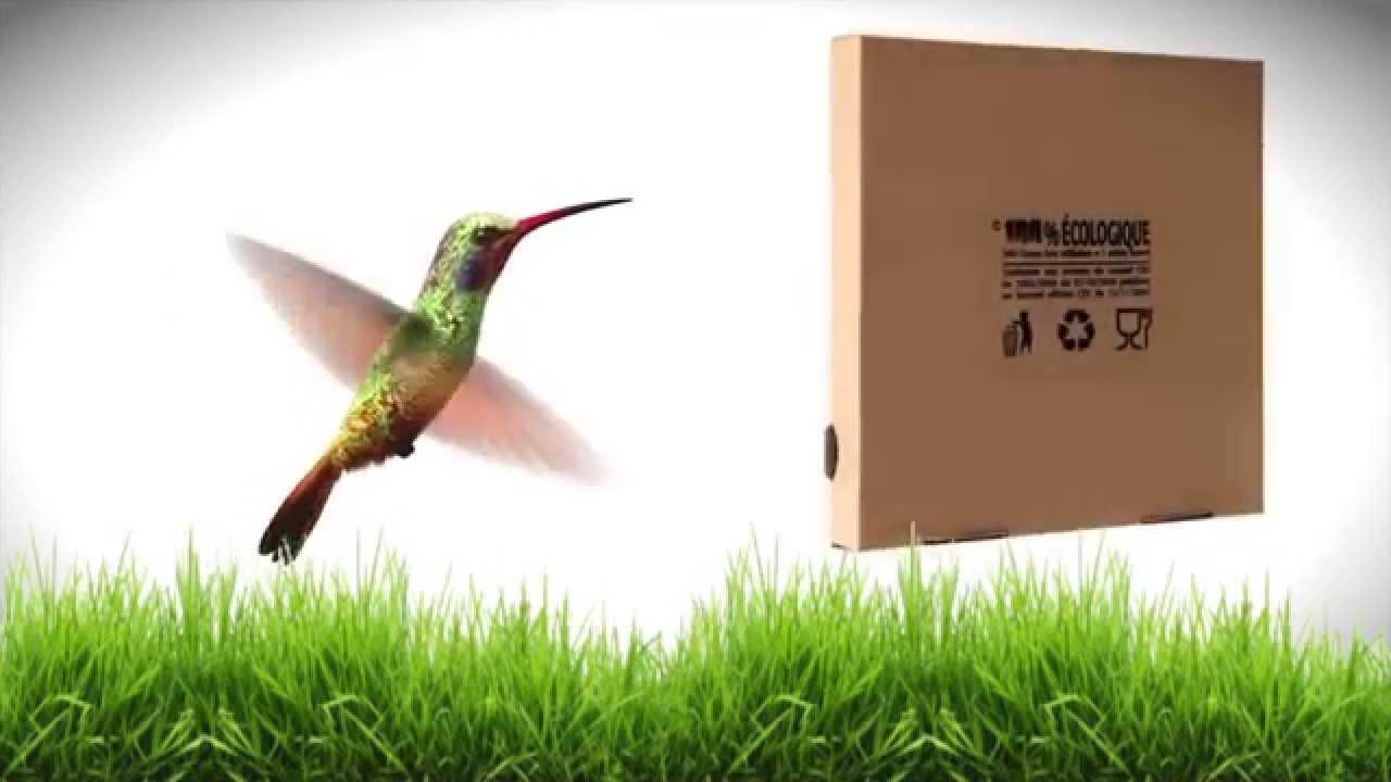 greenbox la boite pizza cologique youtube. Black Bedroom Furniture Sets. Home Design Ideas