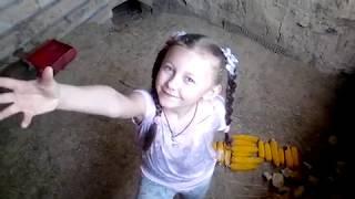 Кролики в яме ИЮНЬ 06.06.2018
